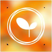 amsara-individ-coaching-icon